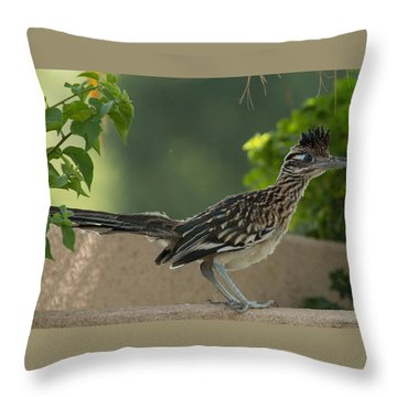 Roadrunner Closeup Throw Pillow