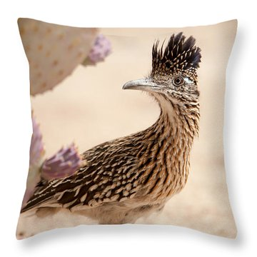 Throw Pillow featuring the photograph Roadrunner by Dan McManus