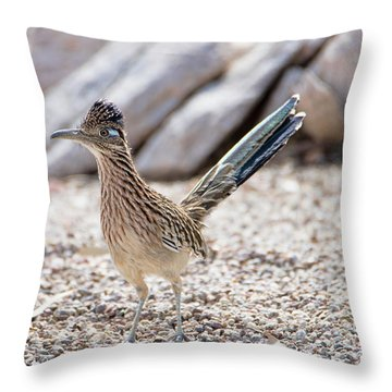Roadrunner Hunting Throw Pillow