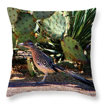 Roadrunner Throw Pillow by Kathryn Meyer