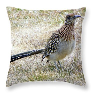 Roadrunner New Mexico Throw Pillow