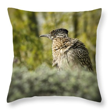 Roadrunner On Guard  Throw Pillow