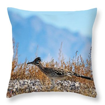 Roadrunner On The Run Throw Pillow
