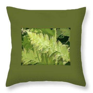 Roadside Fern 2 - Throw Pillow