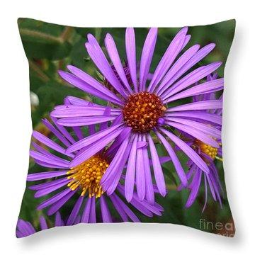 Roadside Flowers Throw Pillow