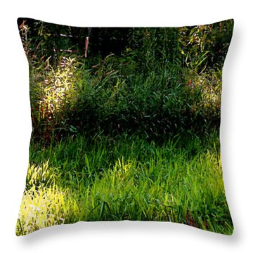 Throw Pillow featuring the photograph Roadside Green Palette In Sunlight by Charlie Spear