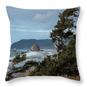 Roadside View Throw Pillow