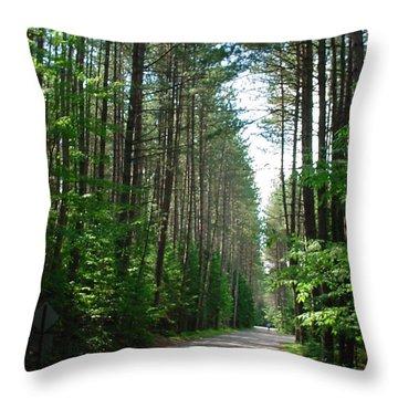Roadway At Fish Creek Throw Pillow by Jerrold Carton