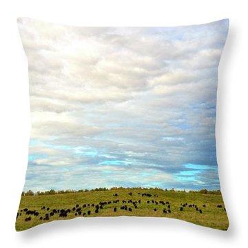 Roaming Throw Pillow