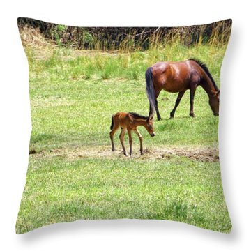 Roaming Freely Throw Pillow
