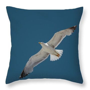 Roaming The Sky Throw Pillow