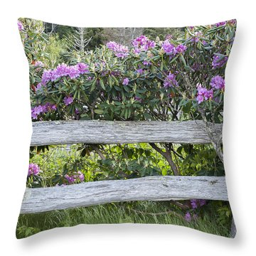 Throw Pillow featuring the photograph Roan Mountain Azaleas by Tyson and Kathy Smith