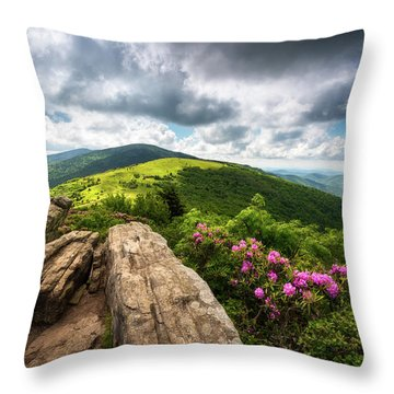 Roan Mountain Radiance Appalachian Trail Nc Tn Mountains Throw Pillow