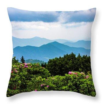Roan Mountain Rhodos Throw Pillow