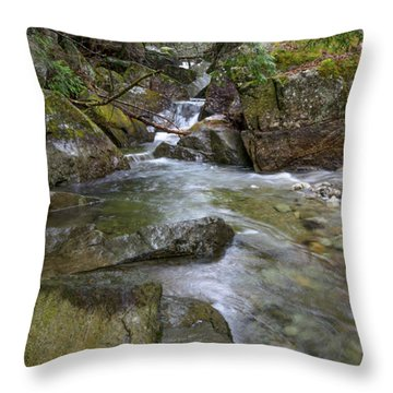 Roaring Brook Throw Pillow
