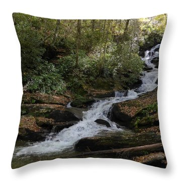 Roaring Fork Falls - October 2015 Throw Pillow