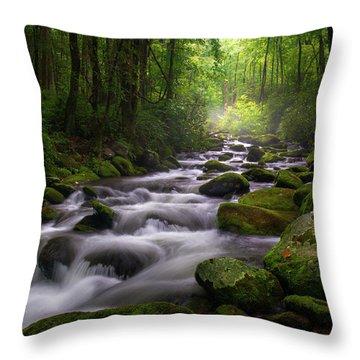 Great Smoky Mountains Roaring Fork Gatlinburg Tennessee Throw Pillow