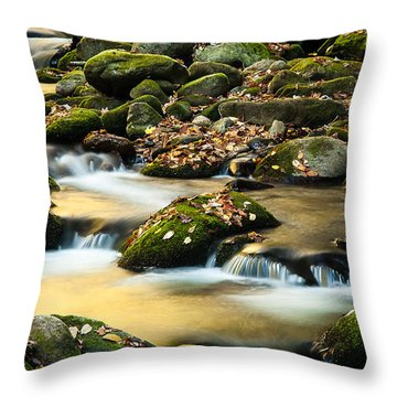 Throw Pillow featuring the photograph Roaring Fork River by Monte Stevens