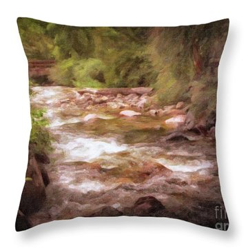 Roaring Fork River Throw Pillow