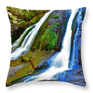 Roaring Run Falls State Park Virginia Throw Pillow