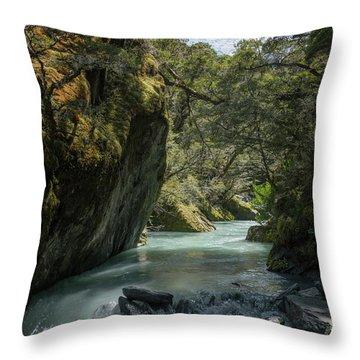 Rob Roy Stream New Zealand Throw Pillow