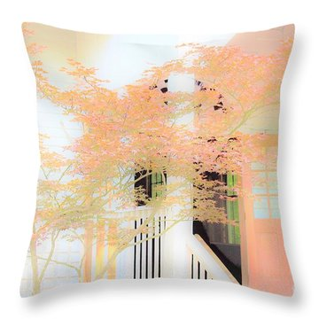 Robert F. Thomas Chapel Throw Pillow