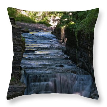 Robert Treman 0512 Throw Pillow