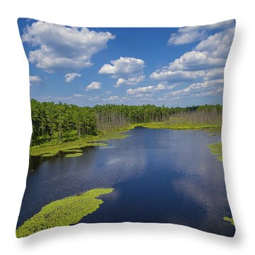 Throw Pillow featuring the photograph Roberts Branch by Louis Dallara
