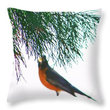 Robin 2 Throw Pillow by Lenore Senior