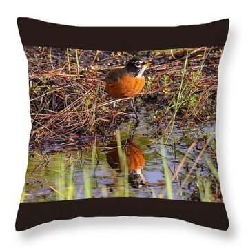 Robin And Reflection Throw Pillow