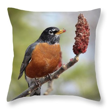 Robin And Sumac Throw Pillow