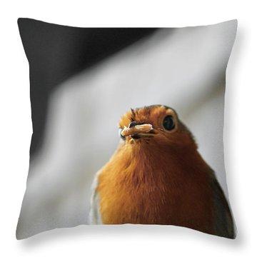 Robin Closeup Throw Pillow