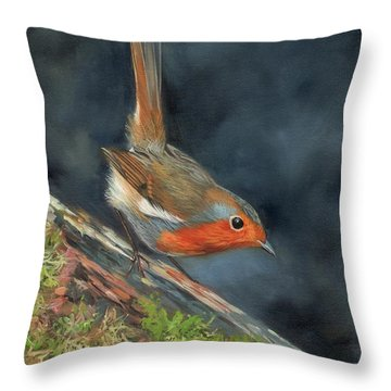 Robin Throw Pillow by David Stribbling
