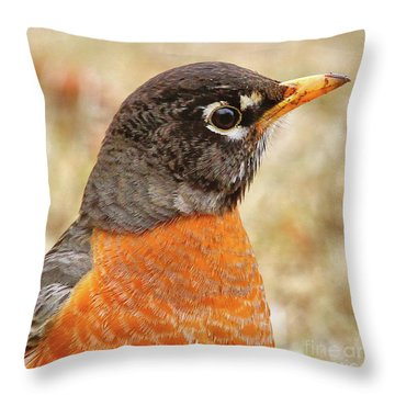 Throw Pillow featuring the photograph Robin by Debbie Stahre