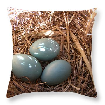 Throw Pillow featuring the photograph Robin Eggs by Angie Rea