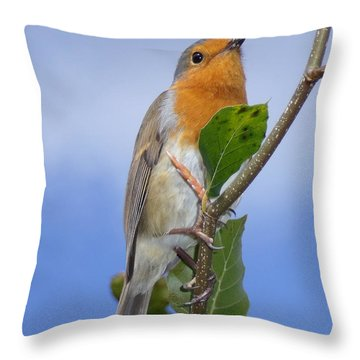 Robin In Eden Throw Pillow