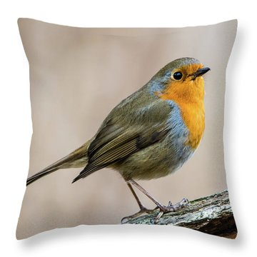 Robin In Spring Throw Pillow by Torbjorn Swenelius