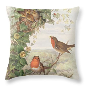 Robin Throw Pillow by John Gould