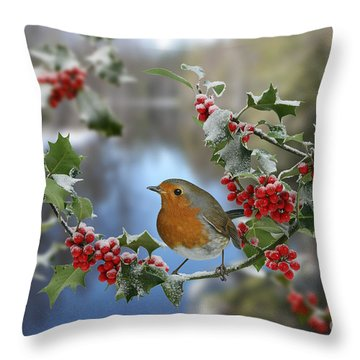 Robin On Holly Branch Throw Pillow
