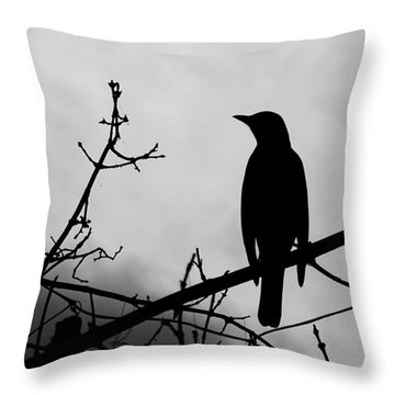 Robin Silhouette Throw Pillow