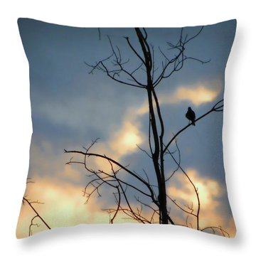 Throw Pillow featuring the photograph Robin Watching Sunset After The Storm by Sandi OReilly
