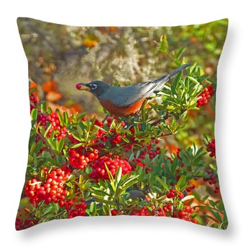 Robins Berry Feast Throw Pillow by K L Kingston
