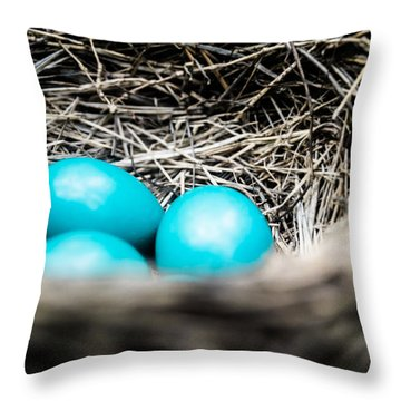 Robin's Eggs Throw Pillow by Shelby  Young