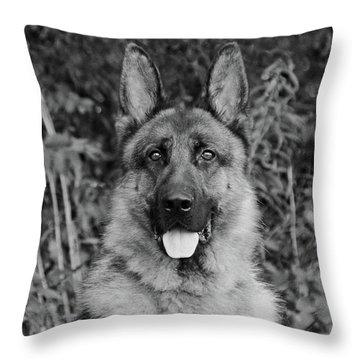 Rocco - Bw Throw Pillow