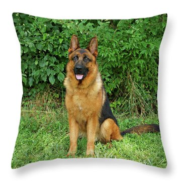 Rocco Sitting Throw Pillow