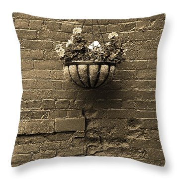 Throw Pillow featuring the photograph Rochester, New York - Wall And Flowers Sepia by Frank Romeo