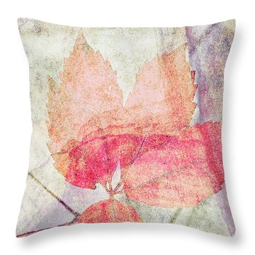 Throw Pillow featuring the photograph Rock And Leaf Composite 2 by Elaine Teague