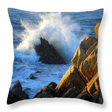 Rock And Wave Throw Pillow by Catherine Lau