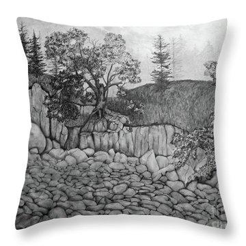 Rock Beach Throw Pillow by John Stuart Webbstock