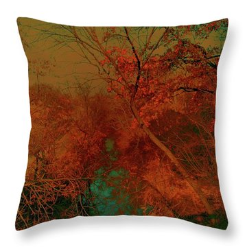 Throw Pillow featuring the photograph Rock Creek At M by EDi by Darlene